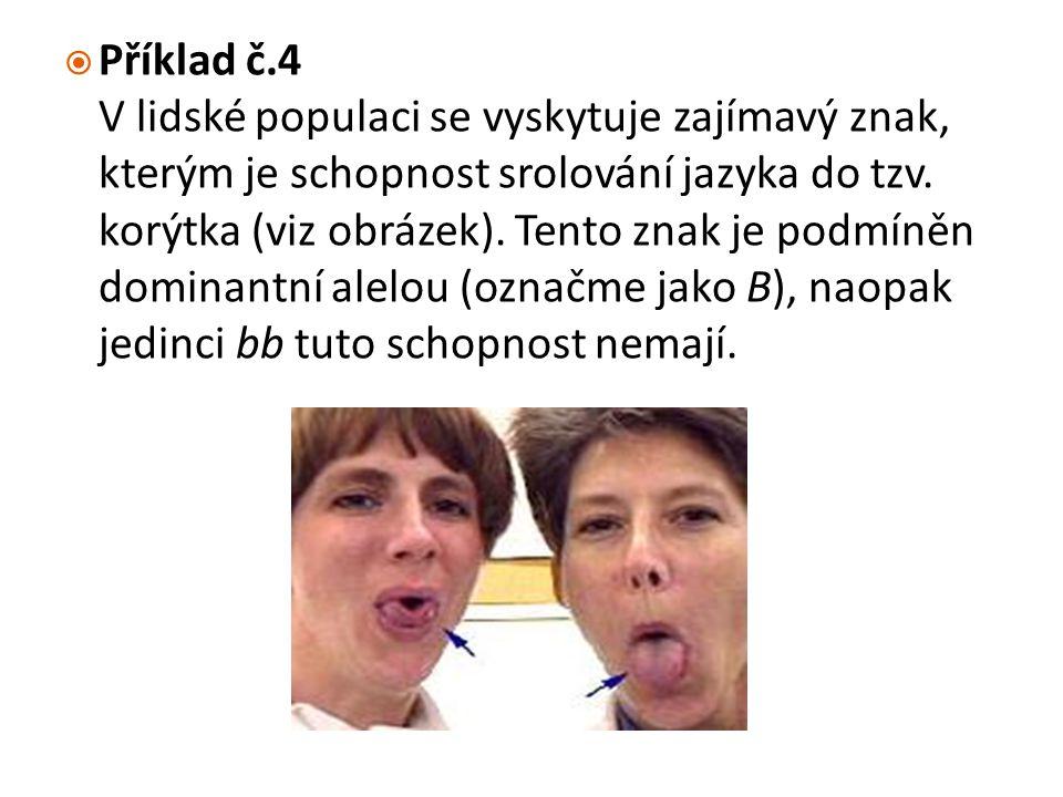  Příklad č.4 V lidské populaci se vyskytuje zajímavý znak, kterým je schopnost srolování jazyka do tzv. korýtka (viz obrázek). Tento znak je podmíněn