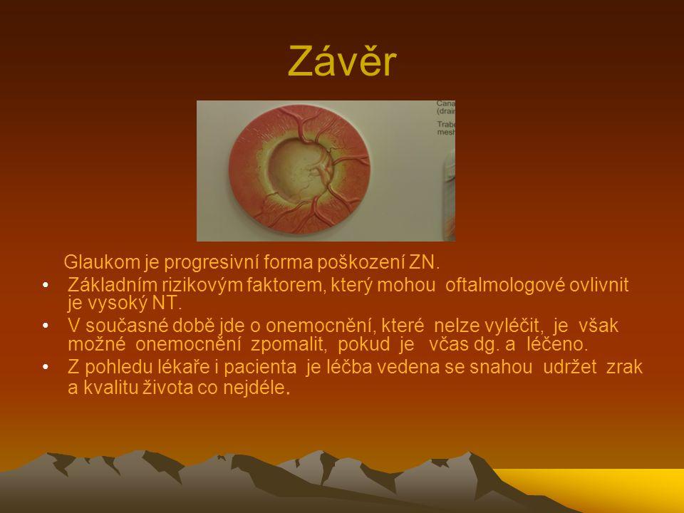 Závěr Glaukom je progresivní forma poškození ZN. Základním rizikovým faktorem, který mohou oftalmologové ovlivnit je vysoký NT. V současné době jde o