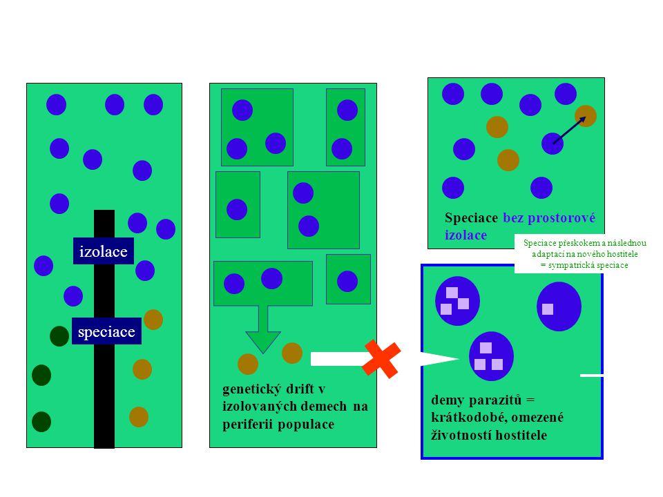 alopatrická speciace genetický drift v izolovaných demech na periferii populace sympatrická speciace izolace speciace Speciace bez prostorové izolace