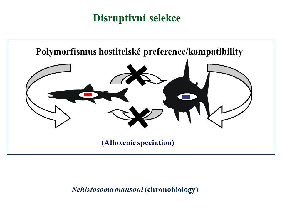 Polymorfismus hostitelské preference/kompatibility Disruptivní selekce Schistosoma mansoni (chronobiology) (Alloxenic speciation)