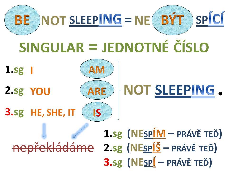 NOT I HE, SHE, IT YOU 2.sg nepřekládáme 1.sg 3.sg 1.sg 3.sg 2.sg SINGULAR = JEDNOTNÉ ČÍSLO. = NOTNE