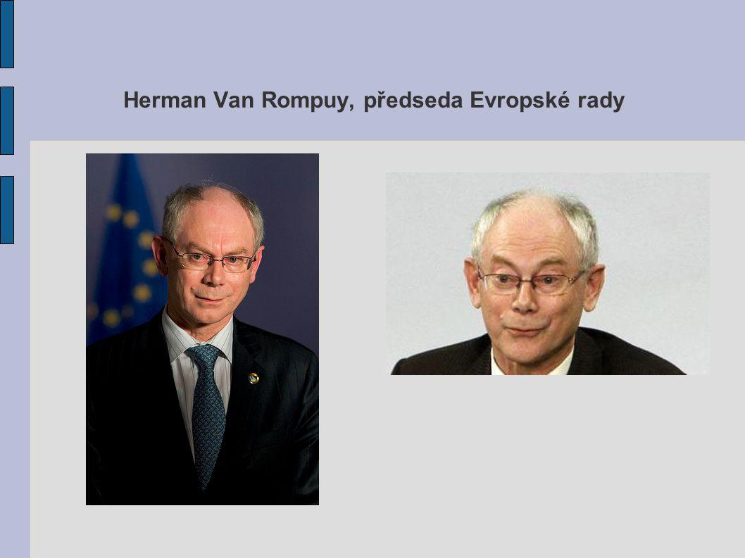 Herman Van Rompuy, předseda Evropské rady