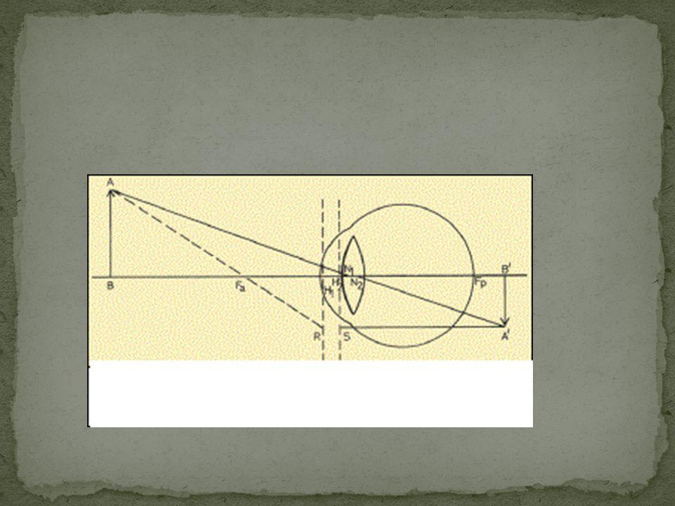 Z optického hlediska je oko složitá lomná soustava, tvořící na sítnici převrácený, skutečný, zmenšený obraz okolí celé lomné prostředí oka má při pohledu do dálky optickou mohutnost 60 D (1 dioptrie = optická mohutnost čočky s ohniskovou vzdáleností f = 1 m) oko je normálně zaostřeno do dálky