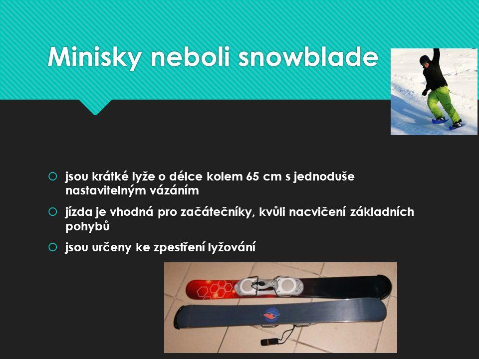 Minisky neboli snowblade  jsou krátké lyže o délce kolem 65 cm s jednoduše nastavitelným vázáním  jízda je vhodná pro začátečníky, kvůli nacvičení základních pohybů  jsou určeny ke zpestření lyžování  jsou krátké lyže o délce kolem 65 cm s jednoduše nastavitelným vázáním  jízda je vhodná pro začátečníky, kvůli nacvičení základních pohybů  jsou určeny ke zpestření lyžování
