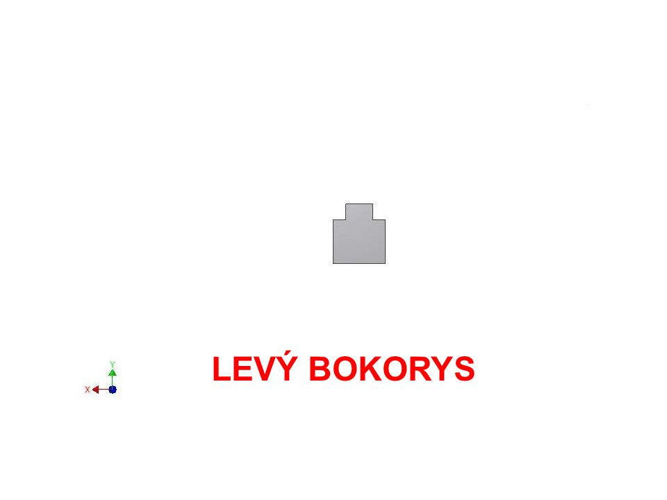 LEVÝ BOKORYS
