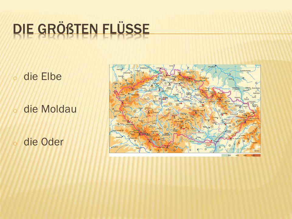 o die Elbe o die Moldau o die Oder