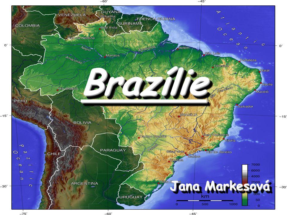 Politický systém Oficiální název Brazilská federativní republika (República Federativa do Brasil) Administrativní členění 26 států a 1 federální distrikt (=vyšší územně- správní jednotka, která není považována za rovnoprávného člena federace) s hlavním městem Brasília Státy: Acre, Alagoas, Amapá, Amazonas, Bahia, Ceará, Espírito Santo, Goiás,… Oficiální název Brazilská federativní republika (República Federativa do Brasil) Administrativní členění 26 států a 1 federální distrikt (=vyšší územně- správní jednotka, která není považována za rovnoprávného člena federace) s hlavním městem Brasília Státy: Acre, Alagoas, Amapá, Amazonas, Bahia, Ceará, Espírito Santo, Goiás,…