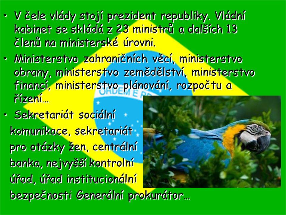 V čele vlády stojí prezident republiky. Vládní kabinet se skládá z 23 ministrů a dalších 13 členů na ministerské úrovni. Ministerstvo zahraničních věc