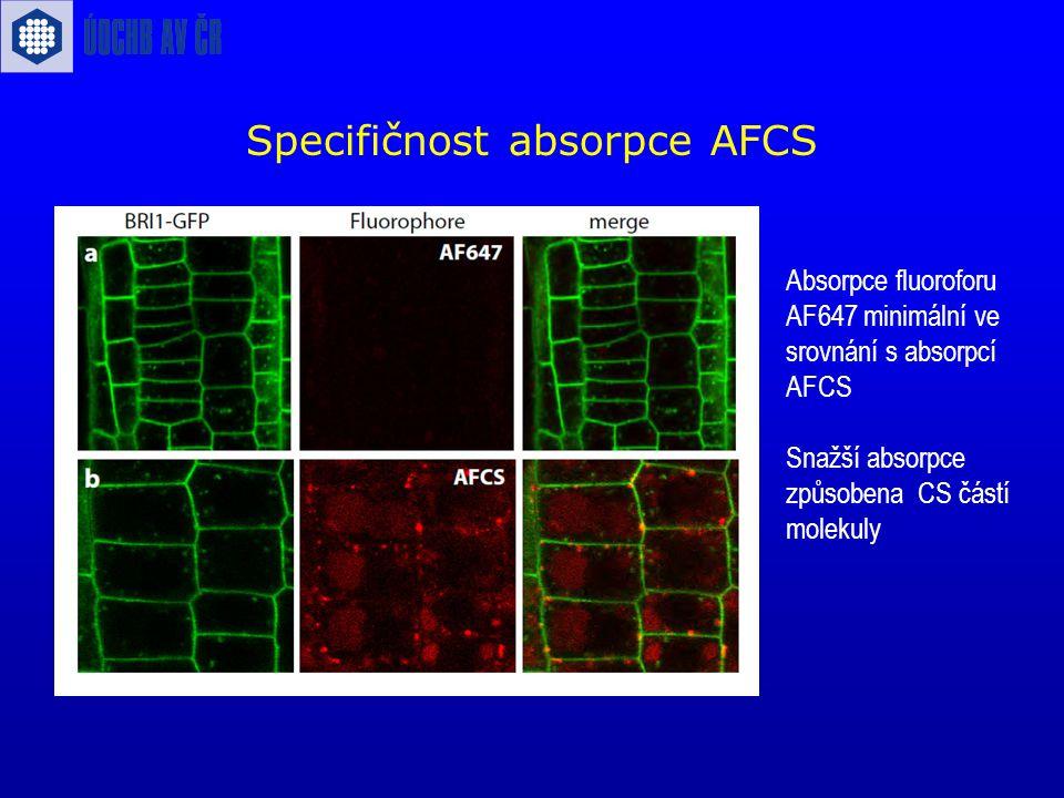 Specifičnost absorpce AFCS Absorpce fluoroforu AF647 minimální ve srovnání s absorpcí AFCS Snažší absorpce způsobena CS částí molekuly