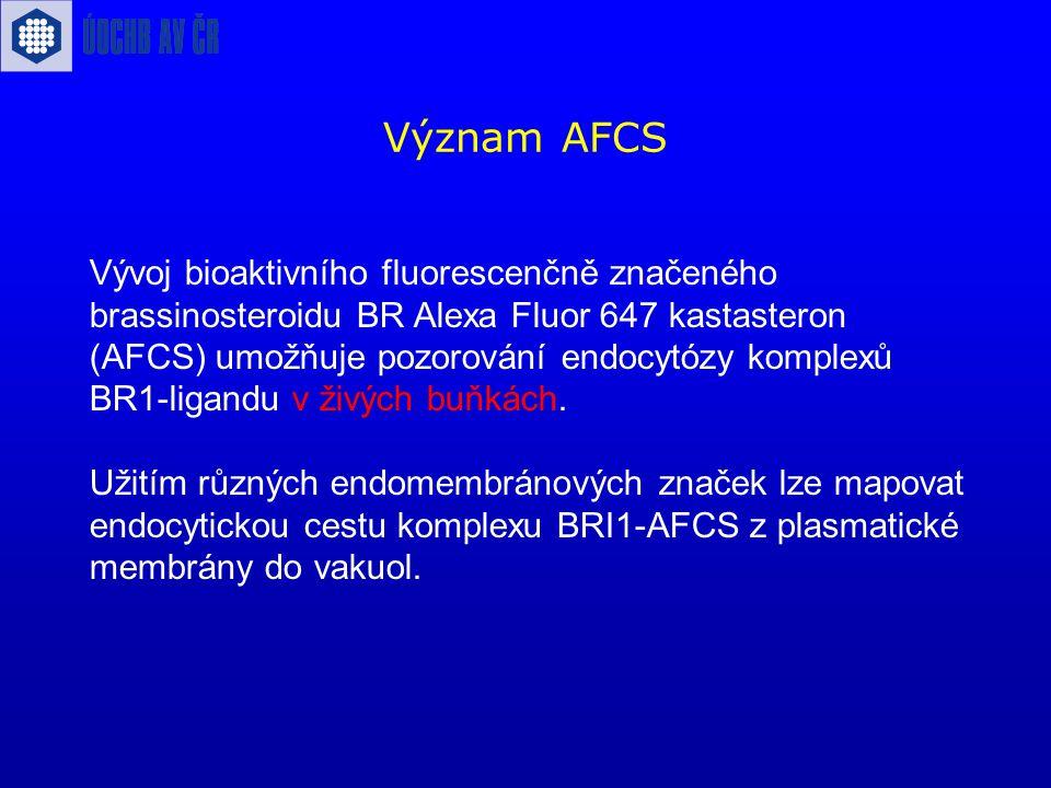 Význam AFCS Vývoj bioaktivního fluorescenčně značeného brassinosteroidu BR Alexa Fluor 647 kastasteron (AFCS) umožňuje pozorování endocytózy komplexů