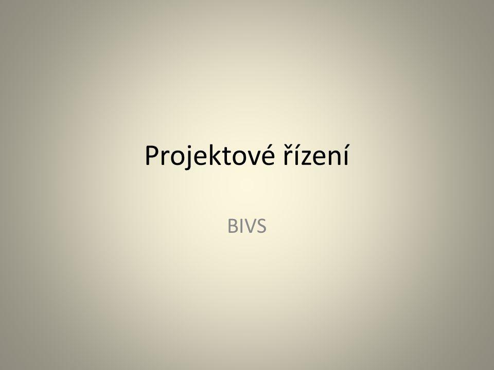 Projektové řízení BIVS