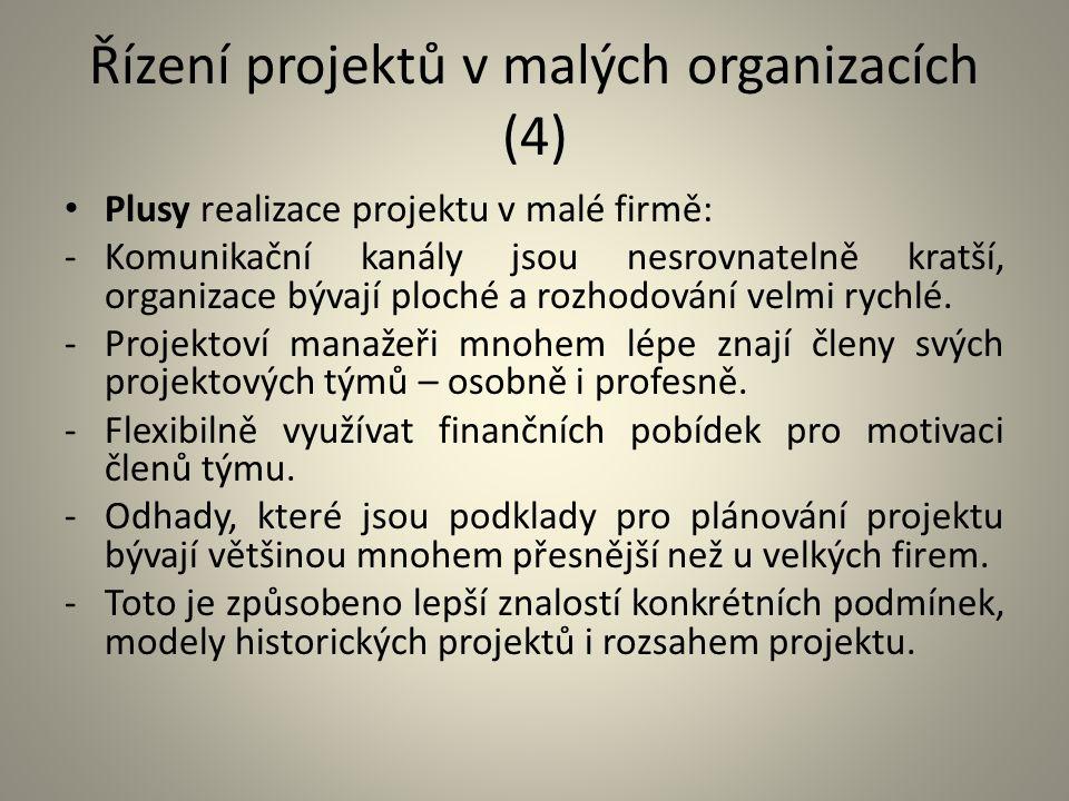 Řízení projektů v malých organizacích (4) Plusy realizace projektu v malé firmě: -Komunikační kanály jsou nesrovnatelně kratší, organizace bývají ploc