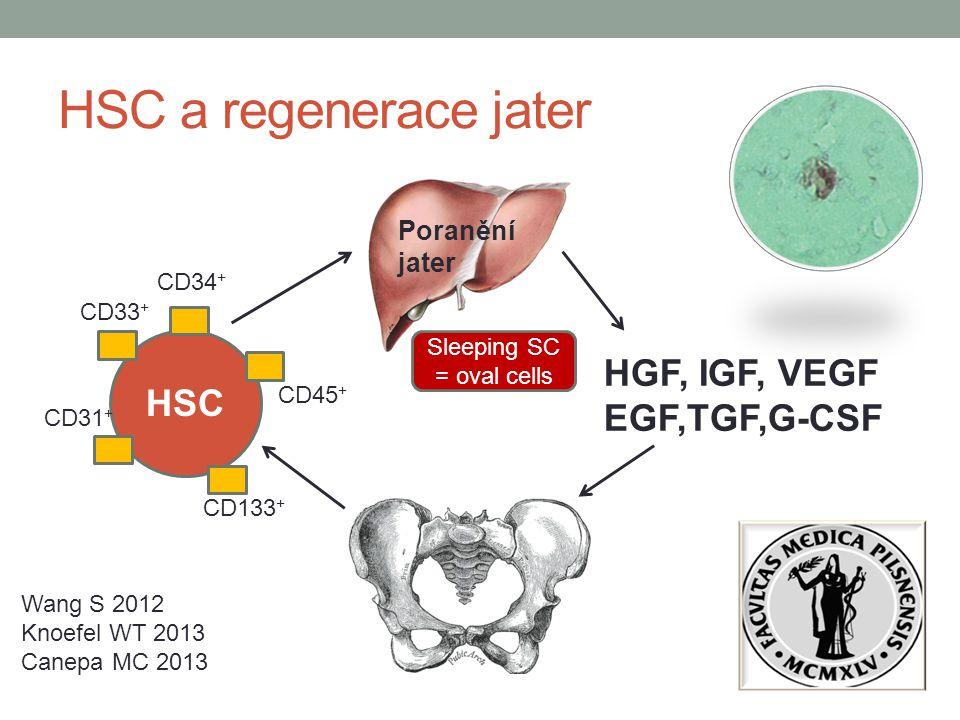 HSC a regenerace jater HGF, IGF, VEGF EGF,TGF,G-CSF HSC CD33 + CD133 + Poranění jater Wang S 2012 Knoefel WT 2013 Canepa MC 2013 CD34 + CD31 + CD45 +