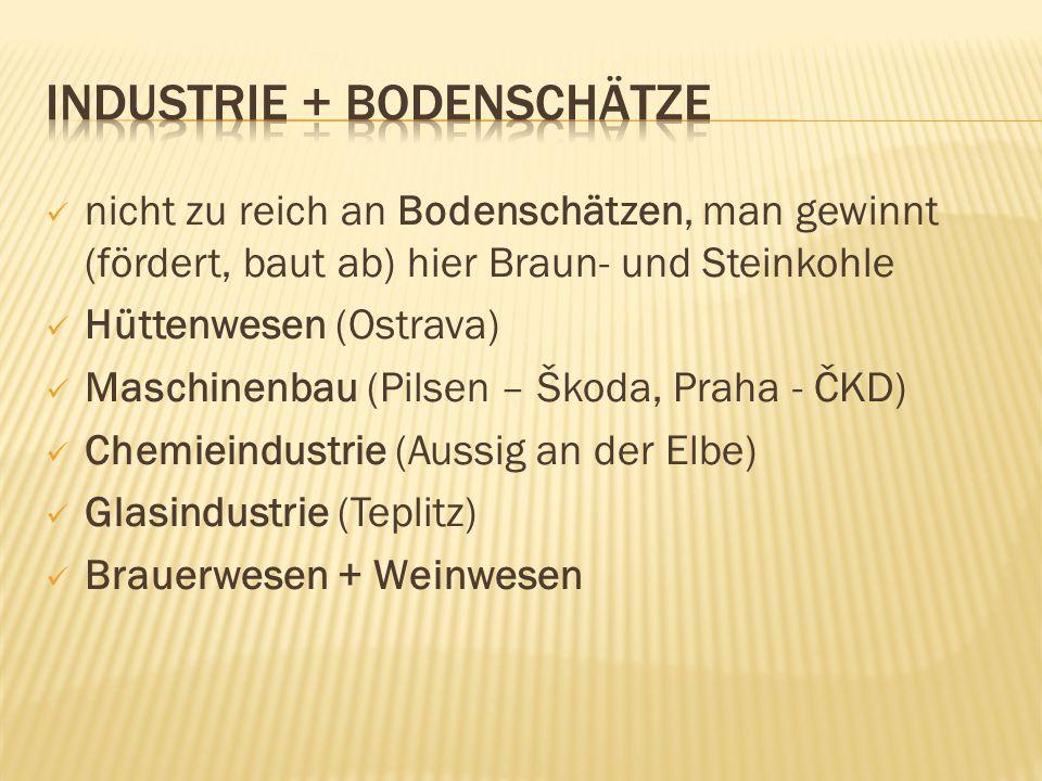 nicht zu reich an Bodenschätzen, man gewinnt (fördert, baut ab) hier Braun- und Steinkohle Hüttenwesen (Ostrava) Maschinenbau (Pilsen – Škoda, Praha - ČKD) Chemieindustrie (Aussig an der Elbe) Glasindustrie (Teplitz) Brauerwesen + Weinwesen
