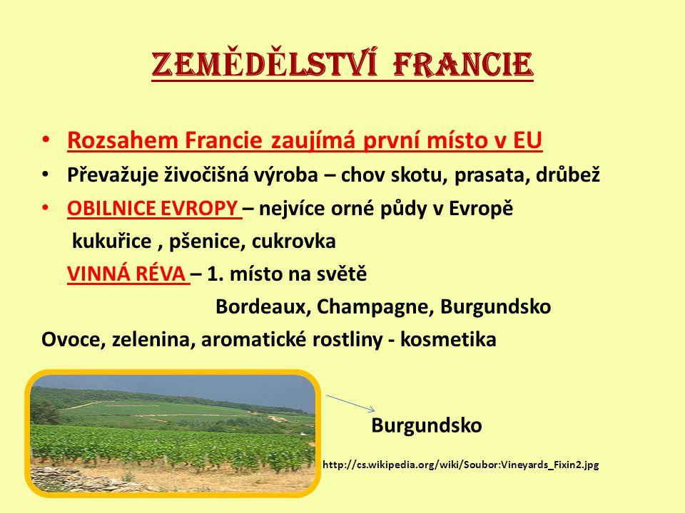 ZEM Ě D Ě LSTVÍ FRANCIE Rozsahem Francie zaujímá první místo v EU Převažuje živočišná výroba – chov skotu, prasata, drůbež OBILNICE EVROPY – nejvíce orné půdy v Evropě kukuřice, pšenice, cukrovka VINNÁ RÉVA – 1.