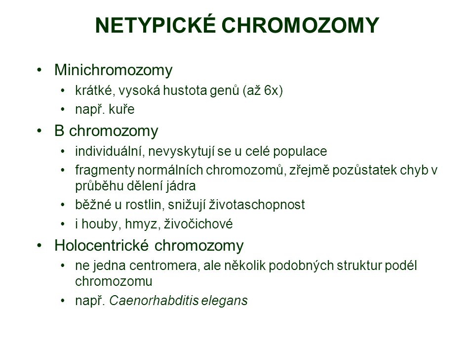 NETYPICKÉ CHROMOZOMY Minichromozomy krátké, vysoká hustota genů (až 6x) např. kuře B chromozomy individuální, nevyskytují se u celé populace fragmenty