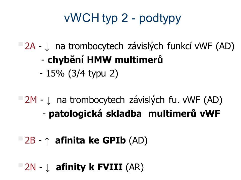 vWCH typ 2 - podtypy  2A - ↓ na trombocytech závislých funkcí vWF (AD) - chybění HMW multimerů - 15% (3/4 typu 2)  2M - ↓ na trombocytech závislých