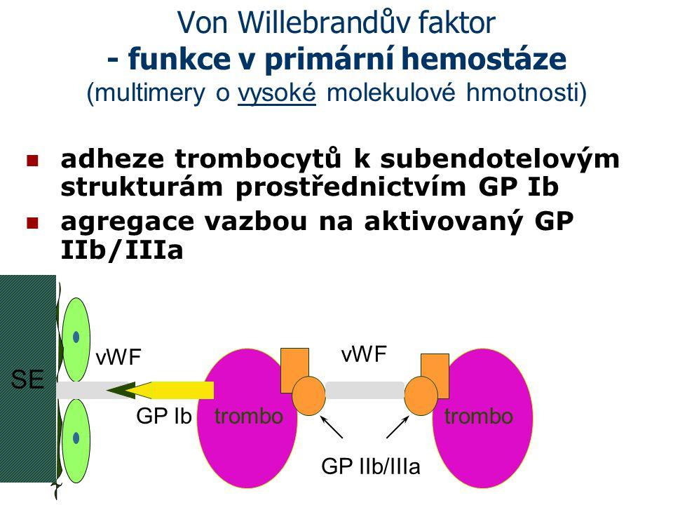 Von Willebrandův faktor - funkce v primární hemostáze (multimery o vysoké molekulové hmotnosti) adheze trombocytů k subendotelovým strukturám prostřed