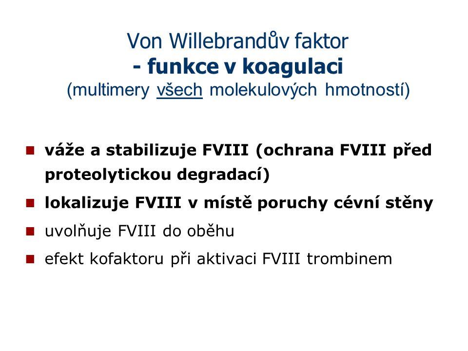 Von Willebrandův faktor - funkce v koagulaci (multimery všech molekulových hmotností) váže a stabilizuje FVIII (ochrana FVIII před proteolytickou degr