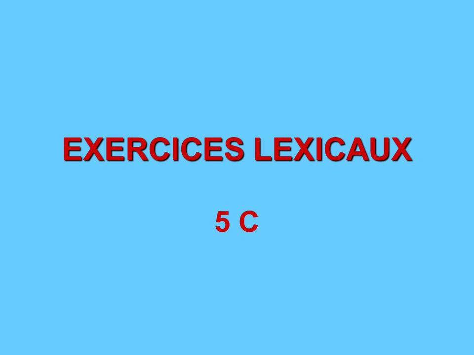 EXERCICES LEXICAUX 5 C