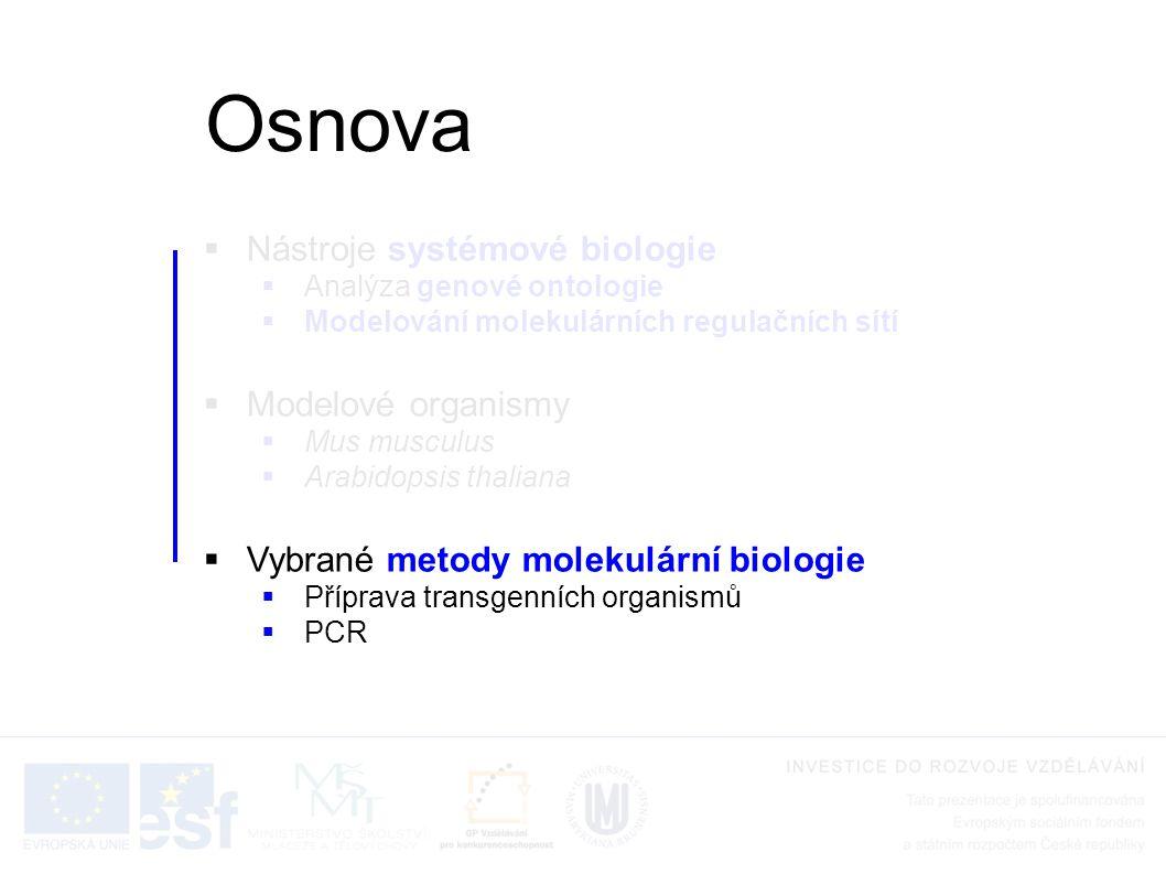  Nástroje systémové biologie  Analýza genové ontologie  Modelování molekulárních regulačních sítí  Modelové organismy  Mus musculus  Arabidopsis thaliana  Vybrané metody molekulární biologie  Příprava transgenních organismů  PCR Osnova
