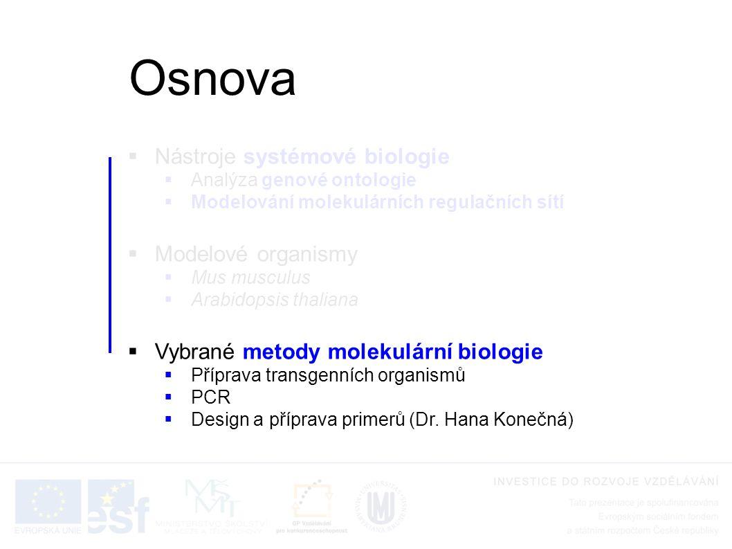  Nástroje systémové biologie  Analýza genové ontologie  Modelování molekulárních regulačních sítí  Modelové organismy  Mus musculus  Arabidopsis thaliana  Vybrané metody molekulární biologie  Příprava transgenních organismů  PCR  Design a příprava primerů (Dr.