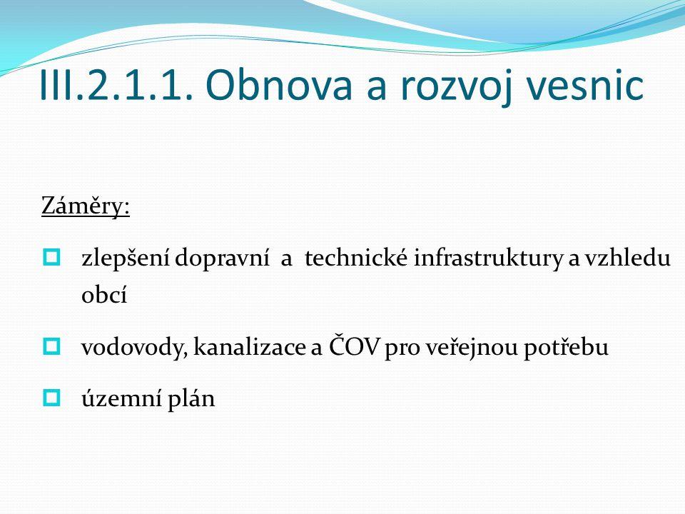 III.2.1.1.