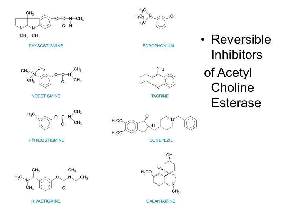 Reversible Inhibitors of Acetyl Choline Esterase
