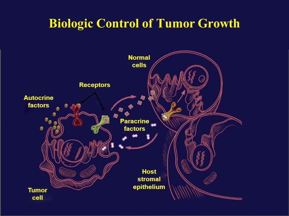 Autocrine factors Receptors Paracrine factors Normal cells Tumor cell Host stromal epithelium Biologic Control of Tumor Growth