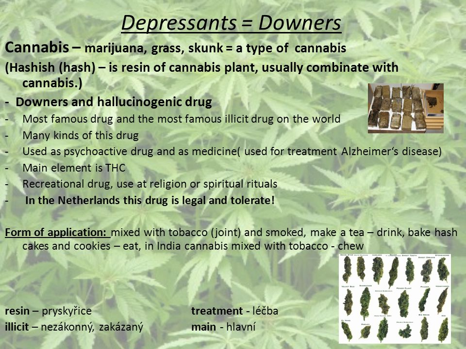 Depressants = Downers Cannabis – marijuana, grass, skunk = a type of cannabis (Hashish (hash) – is resin of cannabis plant, usually combinate with can