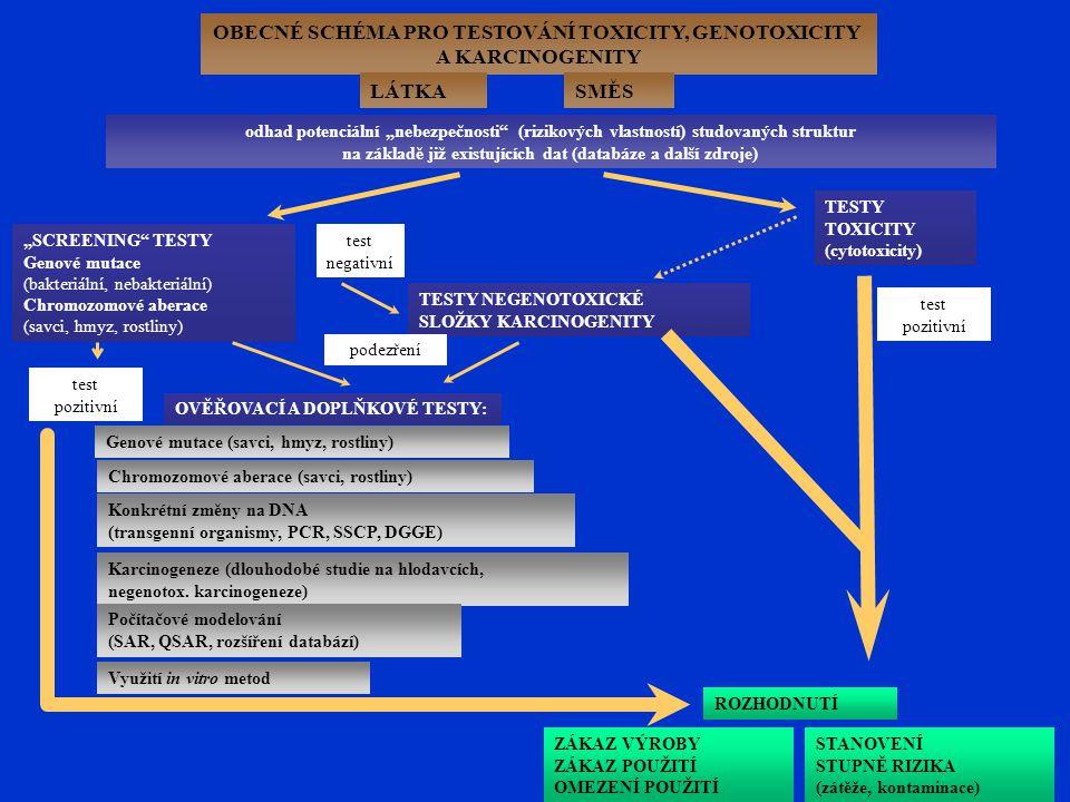 """OBECNÉ SCHÉMA PRO TESTOVÁNÍ TOXICITY, GENOTOXICITY A KARCINOGENITY LÁTKASMĚS odhad potenciální """"nebezpečnosti (rizikových vlastností) studovaných struktur na základě již existujících dat (databáze a další zdroje) """"SCREENING TESTY Genové mutace (bakteriální, nebakteriální) Chromozomové aberace (savci, hmyz, rostliny) TESTY NEGENOTOXICKÉ SLOŽKY KARCINOGENITY TESTY TOXICITY (cytotoxicity) ROZHODNUTÍ STANOVENÍ STUPNĚ RIZIKA (zátěže, kontaminace) ZÁKAZ VÝROBY ZÁKAZ POUŽITÍ OMEZENÍ POUŽITÍ OVĚŘOVACÍ A DOPLŇKOVÉ TESTY: Genové mutace (savci, hmyz, rostliny) Chromozomové aberace (savci, rostliny) Karcinogeneze (dlouhodobé studie na hlodavcích, negenotox."""