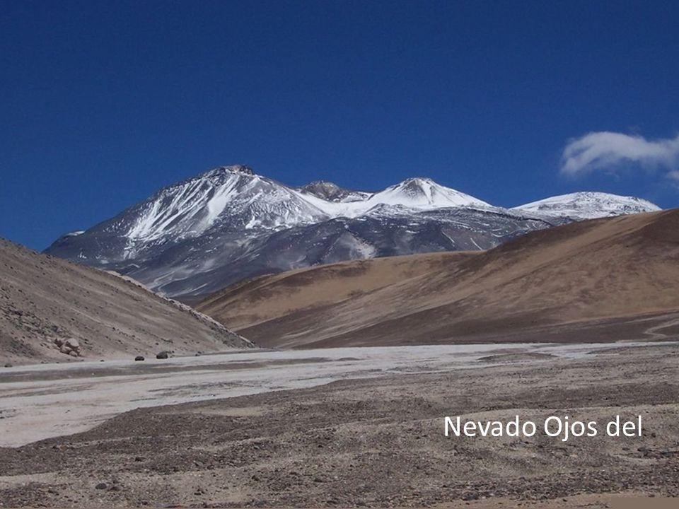 příroda Znak Chile Rozloha:756 626 km² (39. na světě) Nejvyšší bod:Nevado Ojos del Salado(6891,3 m. n. m.) Hodně sopek(např. Villarrica) Měděné doly