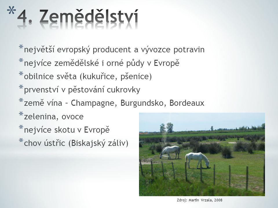 * největší evropský producent a vývozce potravin * nejvíce zemědělské i orné půdy v Evropě * obilnice světa (kukuřice, pšenice) * prvenství v pěstování cukrovky * země vína – Champagne, Burgundsko, Bordeaux * zelenina, ovoce * nejvíce skotu v Evropě * chov ústřic (Biskajský záliv) Zdroj: Martin Vrzala, 2008