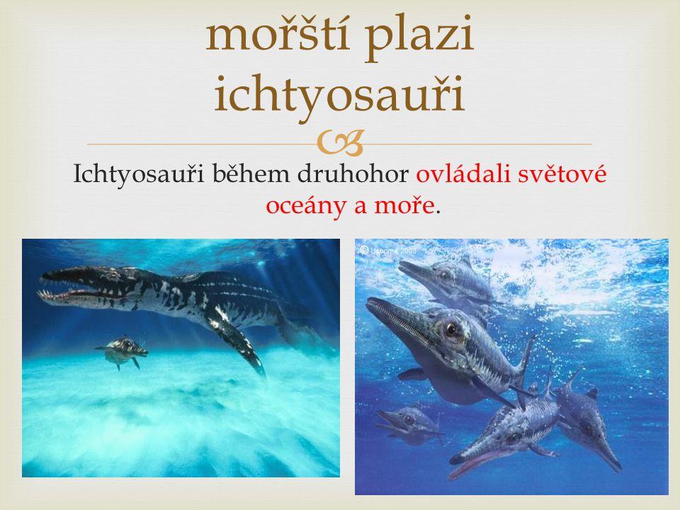  mořští plazi ichtyosauři Ichtyosauři během druhohor ovládali světové oceány a moře.