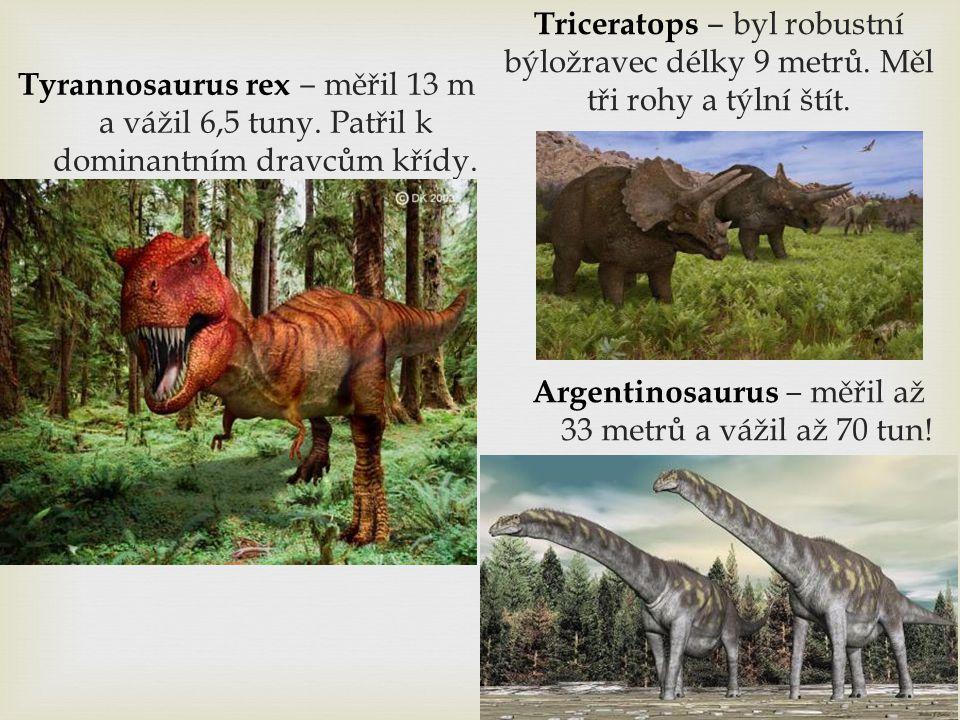 Tyrannosaurus rex ‒ měřil 13 m a vážil 6,5 tuny. Patřil k dominantním dravcům křídy. Argentinosaurus ‒ měřil až 33 metrů a vážil až 70 tun! Triceratop