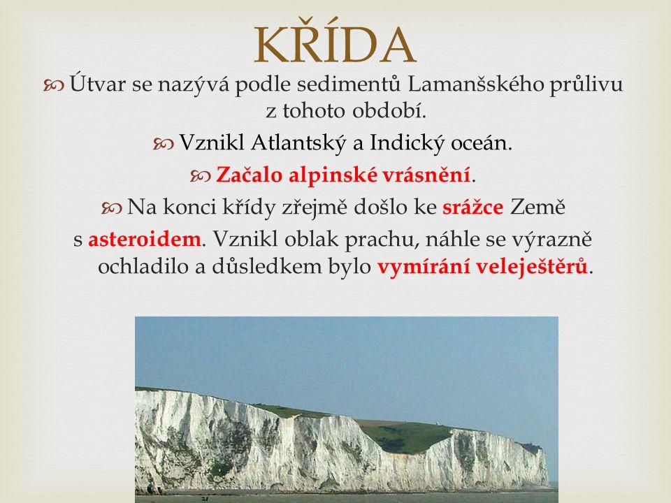 KŘÍDA  Útvar se nazývá podle sedimentů Lamanšského průlivu z tohoto období.  Vznikl Atlantský a Indický oceán.  Začalo alpinské vrásnění.  Na konc