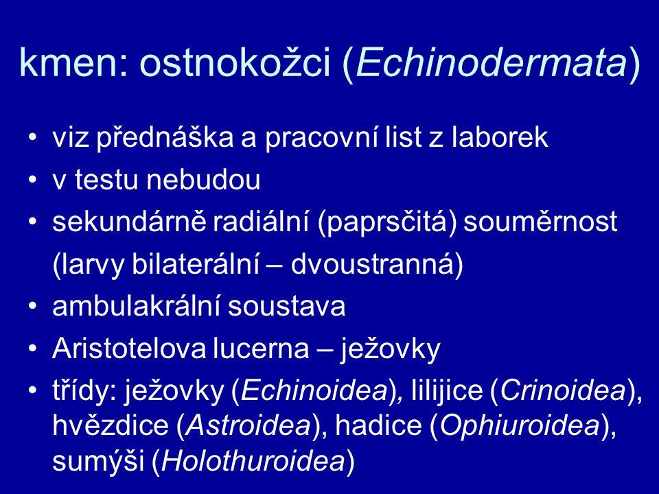 kmen: ostnokožci (Echinodermata) viz přednáška a pracovní list z laborek v testu nebudou sekundárně radiální (paprsčitá) souměrnost (larvy bilaterální