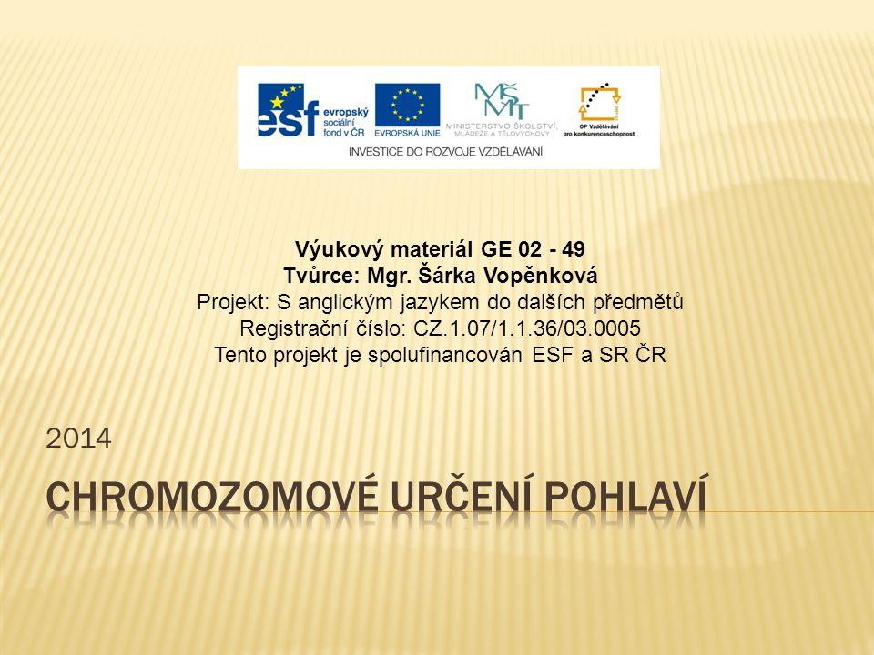 2014 Výukový materiál GE 02 - 49 Tvůrce: Mgr. Šárka Vopěnková Projekt: S anglickým jazykem do dalších předmětů Registrační číslo: CZ.1.07/1.1.36/03.00