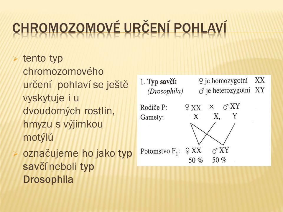  tento typ chromozomového určení pohlaví se ještě vyskytuje i u dvoudomých rostlin, hmyzu s výjimkou motýlů  označujeme ho jako typ savčí neboli typ Drosophila