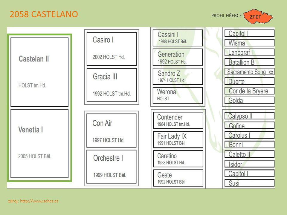 2058 CASTELANO PROFIL HŘEBCE zdroj: http://www.schct.cz