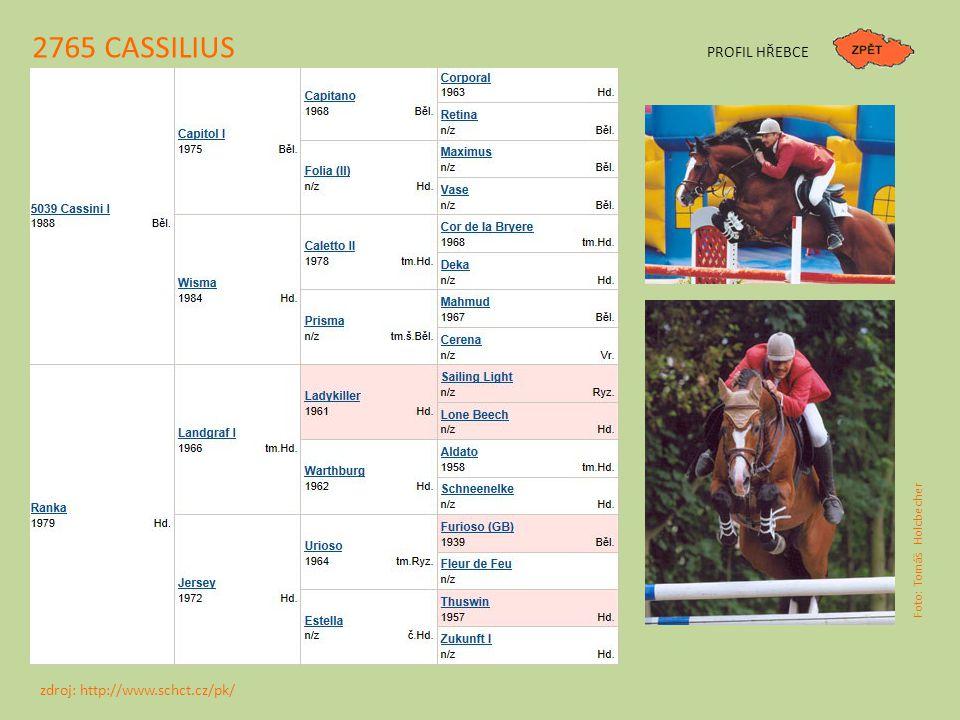 2765 CASSILIUS PROFIL HŘEBCE zdroj: http://www.schct.cz/pk/
