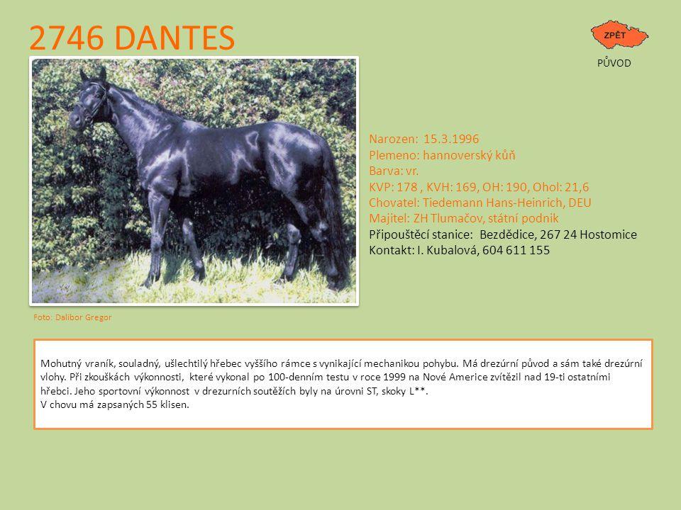 2746 DANTES PŮVOD Narozen: 15.3.1996 Plemeno: hannoverský kůň Barva: vr.