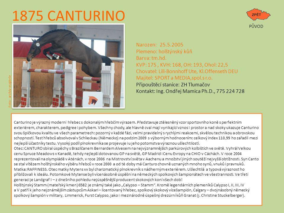 1875 CANTURINO PŮVOD Narozen: 25.5.2005 Plemeno: holštýnský kůň Barva: tm.hd. KVP: 175, KVH: 168, OH: 193, Ohol: 22,5 Chovatel: Lill-Bonnhoff Ute, Kl.