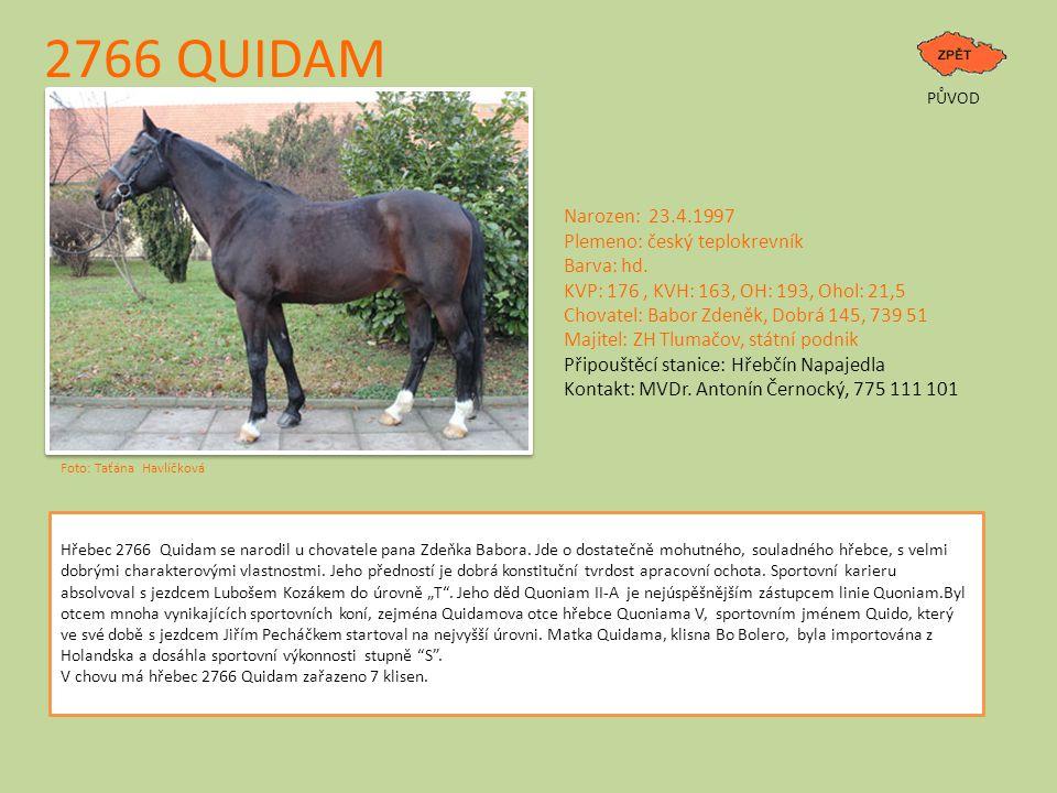 2766 QUIDAM PŮVOD Narozen: 23.4.1997 Plemeno: český teplokrevník Barva: hd.