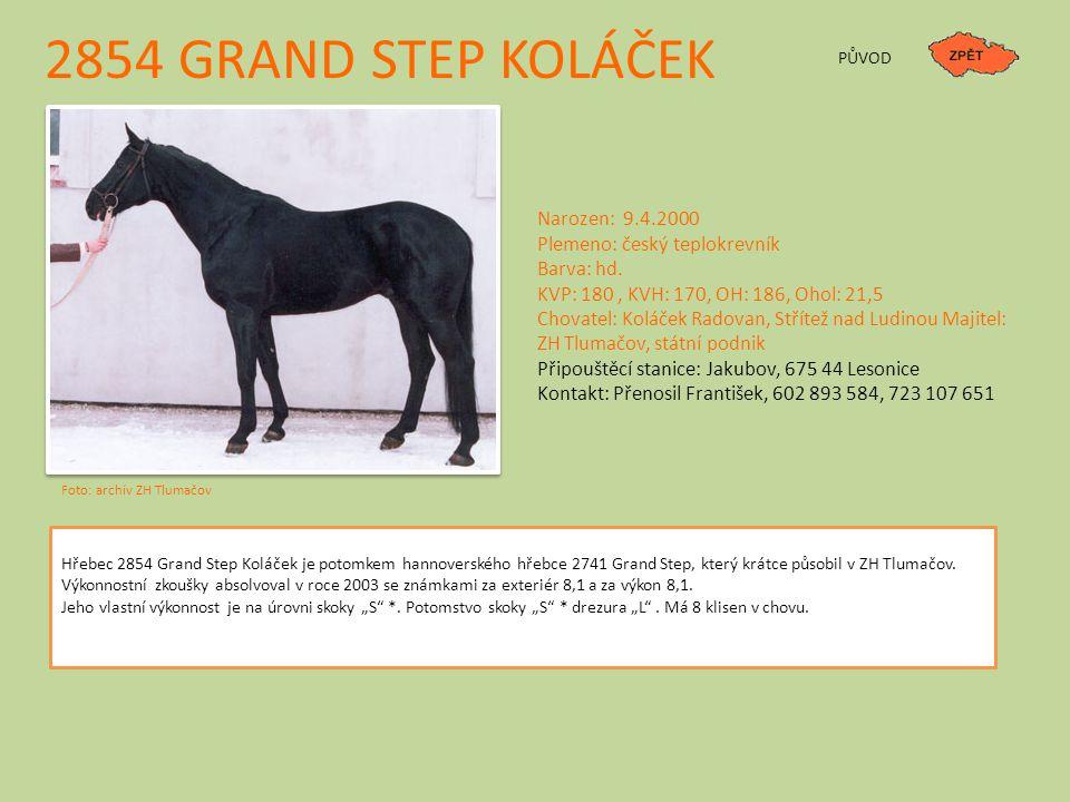 2854 GRAND STEP KOLÁČEK PŮVOD Narozen: 9.4.2000 Plemeno: český teplokrevník Barva: hd.