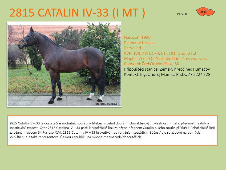 2815 CATALIN IV-33 (I MT ) PŮVOD Narozen: 1990 Plemeno: furioso Barva: hd. KVP: 179, KVH: 170, OH: 191, Ohol: 21,2 Majitel: Zemský hřebčinec Tlumačov,