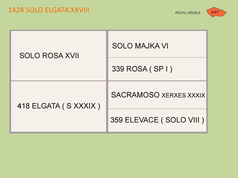 1424 SOLO ELGATA XXVIII PROFIL HŘEBCE