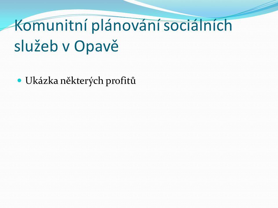 Komunitní plánování sociálních služeb v Opavě Ukázka některých profitů