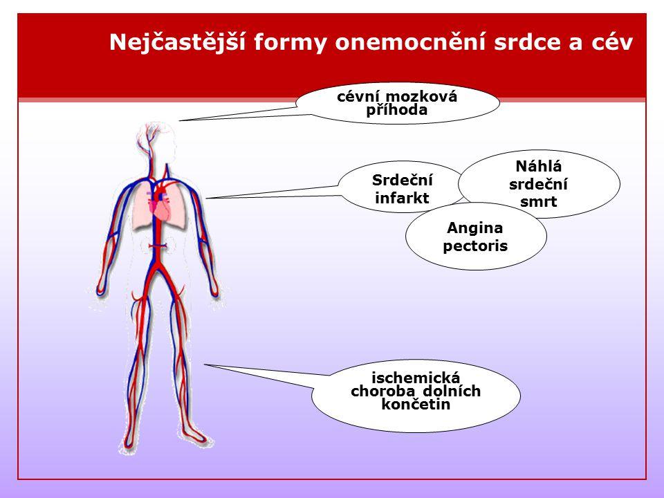 Srdečně cévní onemocnění vzniká na základě ATEROSKLERÓZY ZDRAVÁ CÉVA ZÚŽENÁ CÉVA STĚNA CÉVYCHOLESTEROLCHOLESTEROLOVÁ HMOTA Ateroskleróza = kornatění cév