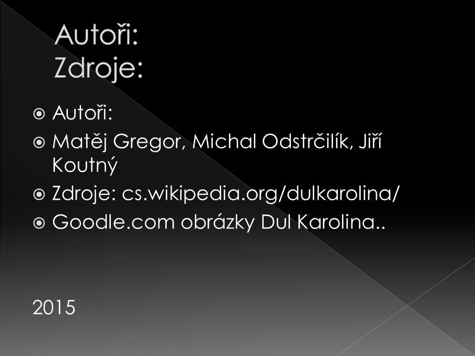  Autoři:  Matěj Gregor, Michal Odstrčilík, Jiří Koutný  Zdroje: cs.wikipedia.org/dulkarolina/  Goodle.com obrázky Dul Karolina.. 2015